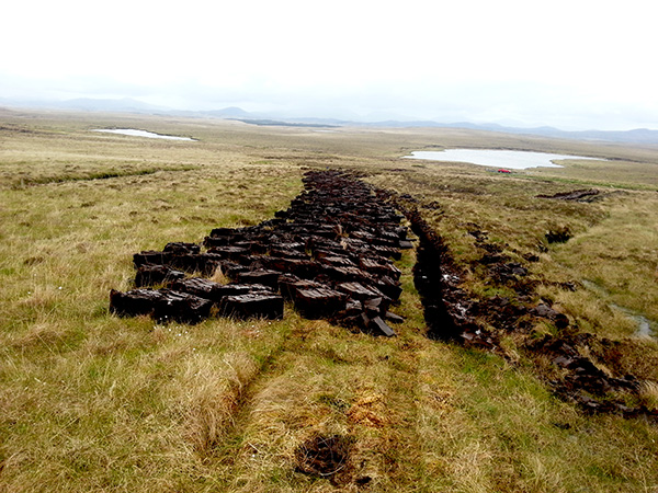Moorland Peats